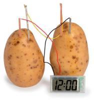 Big Buy Experiment Potato Clock